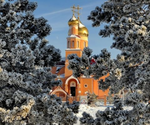Рождественская сказка в Православной гимназии